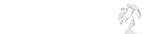 Nykan Logo